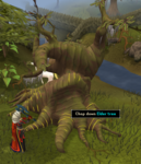 eldertree.png